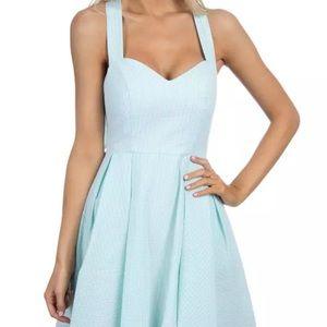 Dresses & Skirts - Lauren James Livingston Dress NWT